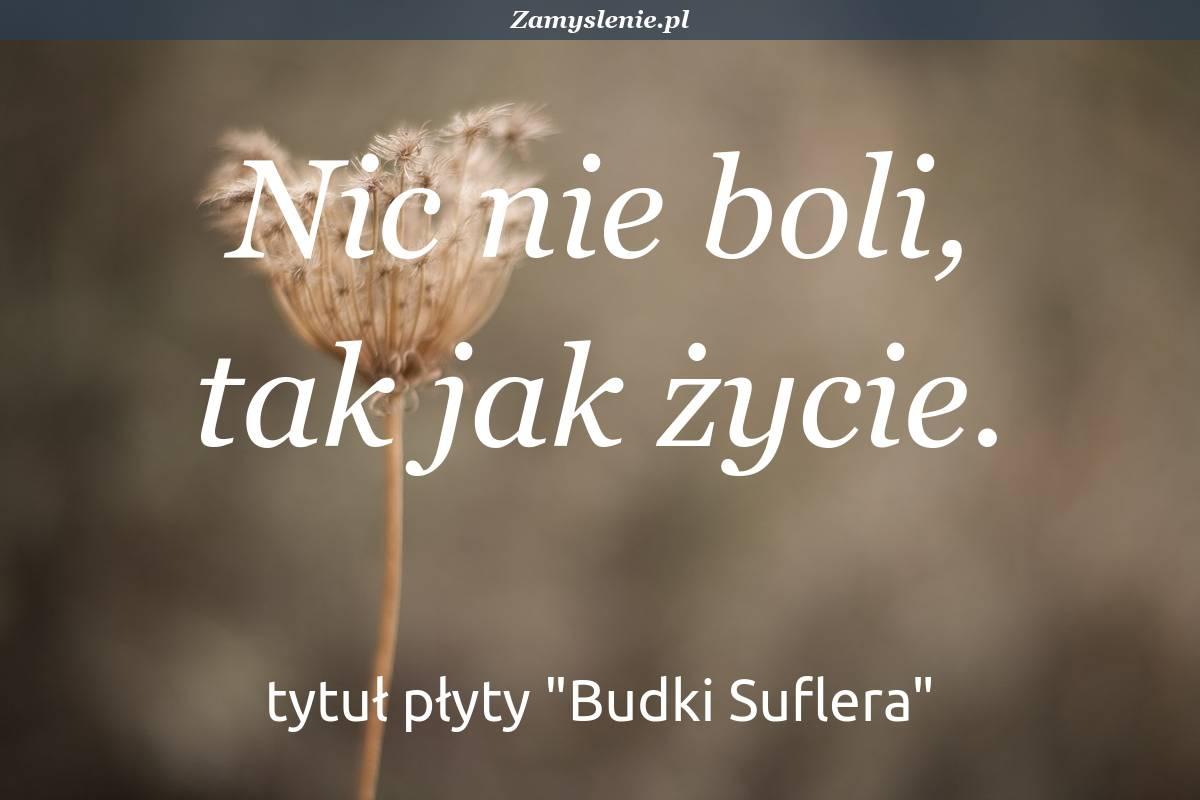 Obraz / mem do cytatu: Nic nie boli, tak jak życie.