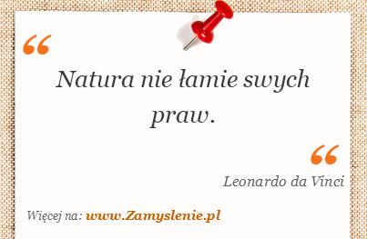 Obraz / mem do cytatu: Natura nie łamie swych praw.