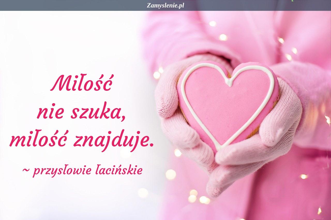 Obraz / mem do cytatu: Miłość nie szuka, miłość znajduje.
