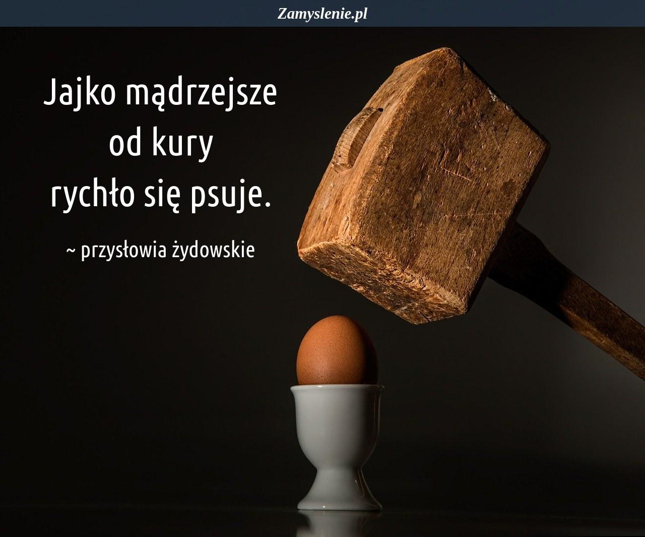 Obraz / mem do cytatu: Jajko mądrzejsze od kury rychło się psuje.