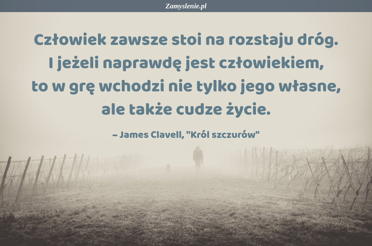 Obraz / mem do cytatu: Człowiek zawsze stoi na rozstaju dróg. I jeżeli naprawdę jest człowiekiem, to w grę wchodzi nie tylko jego własne, ale także cudze życie.
