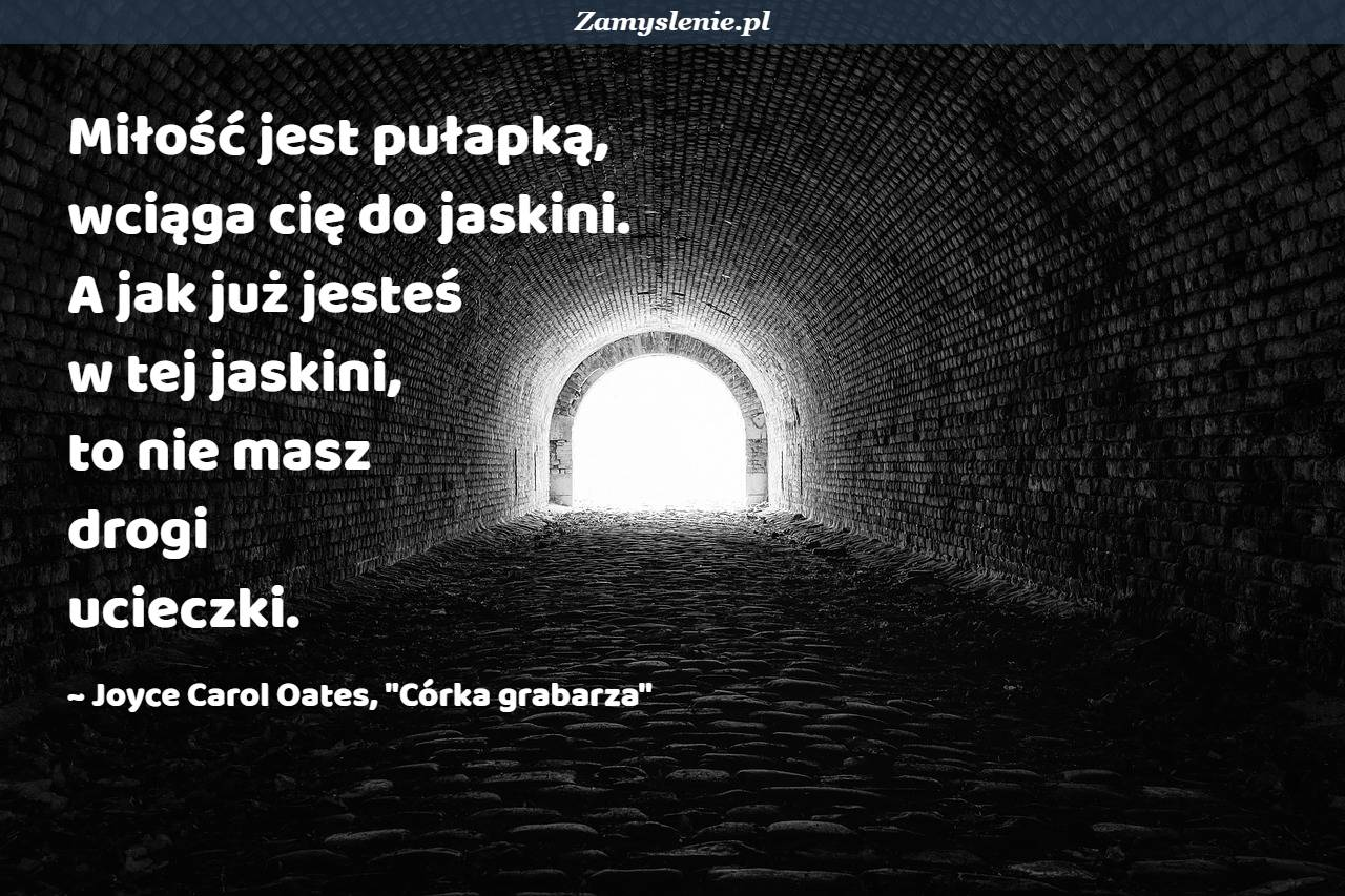 Obraz / mem do cytatu: Miłość jest pułapką, wciąga cię do jaskini. A jak już jesteś w tej jaskini, to nie masz drogi ucieczki.