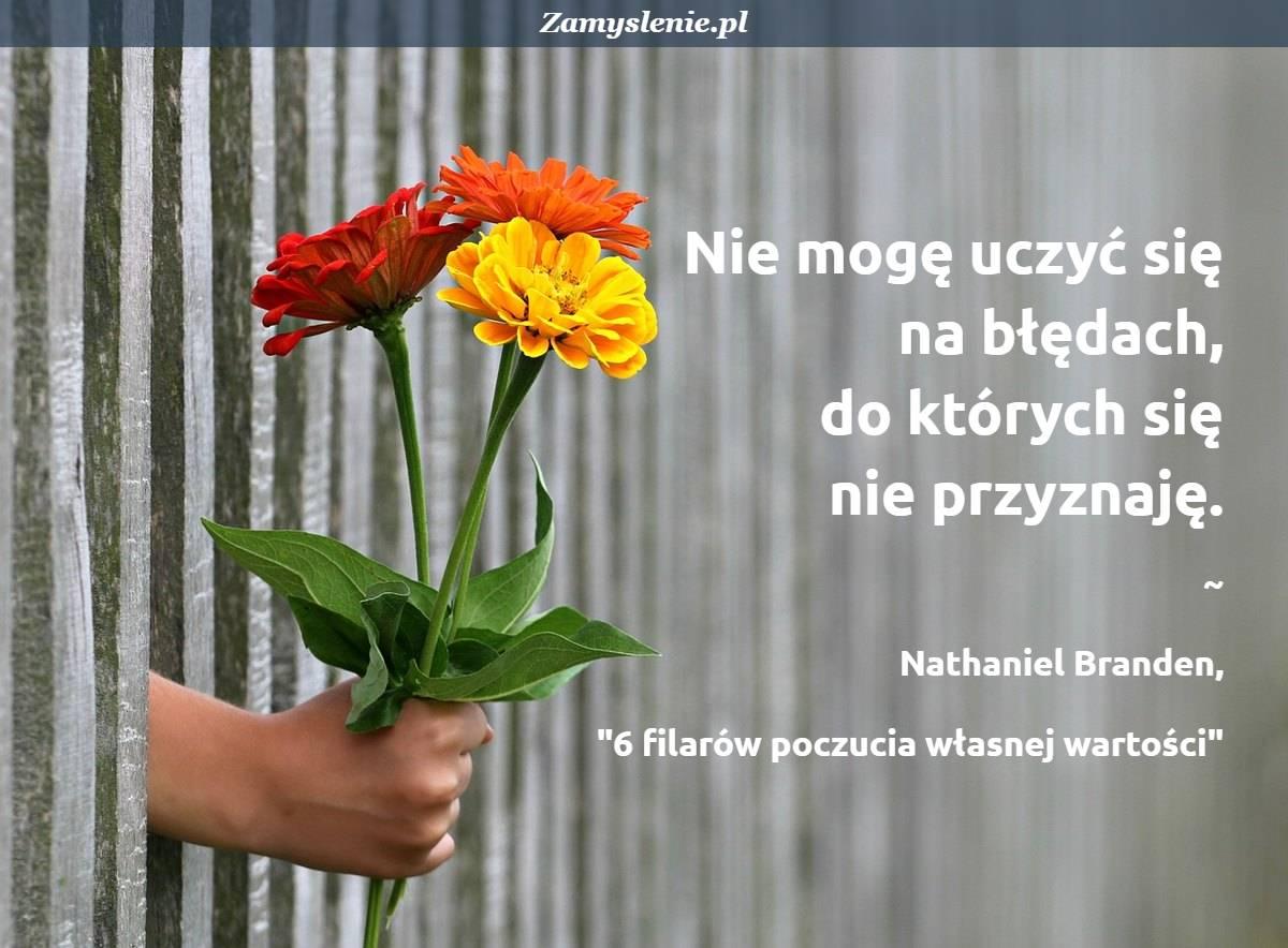 Obraz / mem do cytatu: Nie mogę uczyć się na błędach, do których się nie przyznaję.