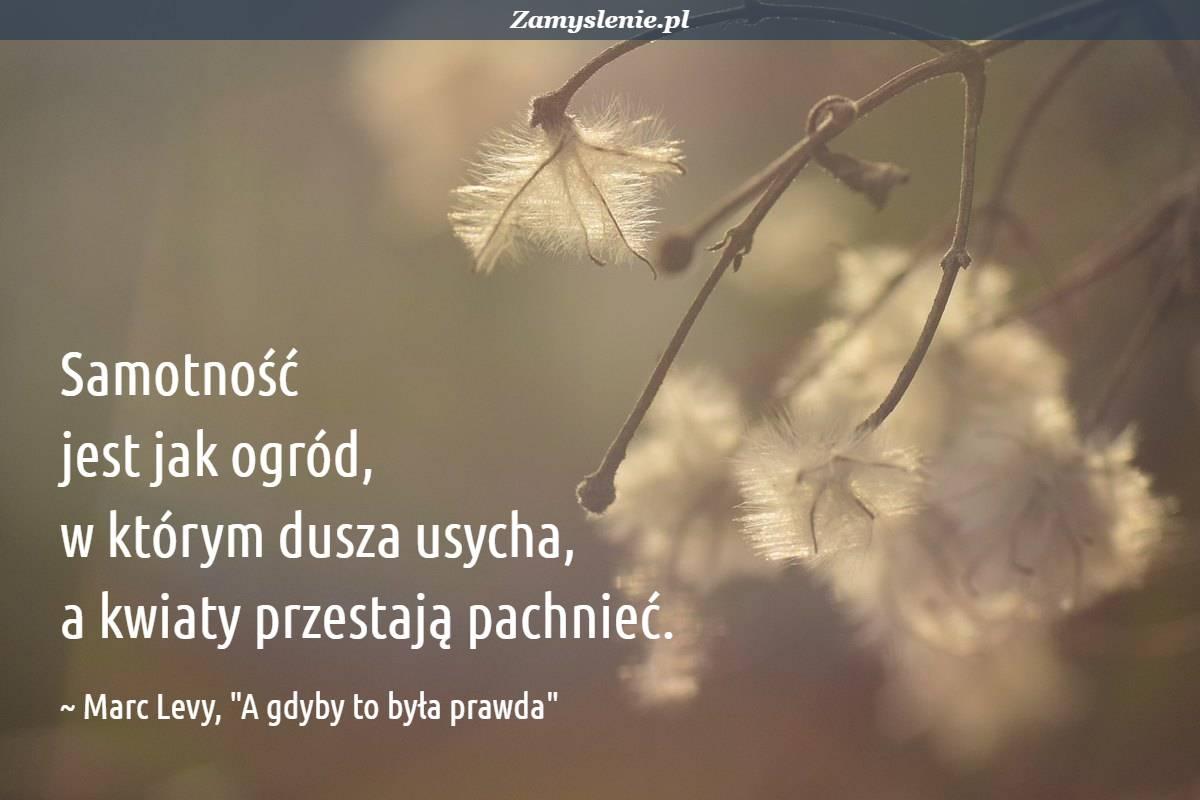 Obraz / mem do cytatu: Samotność jest jak ogród, w którym dusza usycha, a kwiaty przestają pachnieć.
