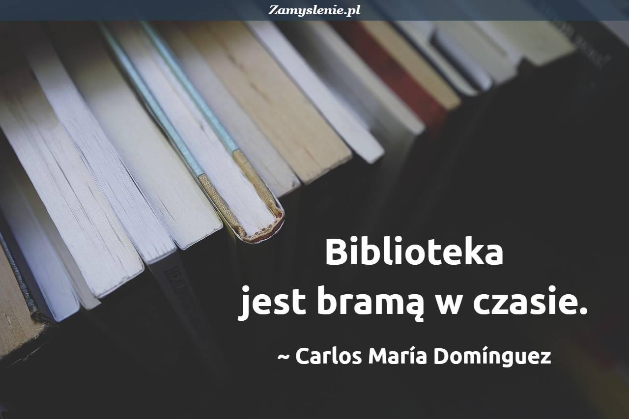 Obraz / mem do cytatu: Biblioteka jest bramą w czasie.