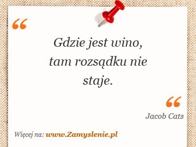 Obraz / mem do cytatu: Gdzie jest wino, tam rozsądku nie staje.