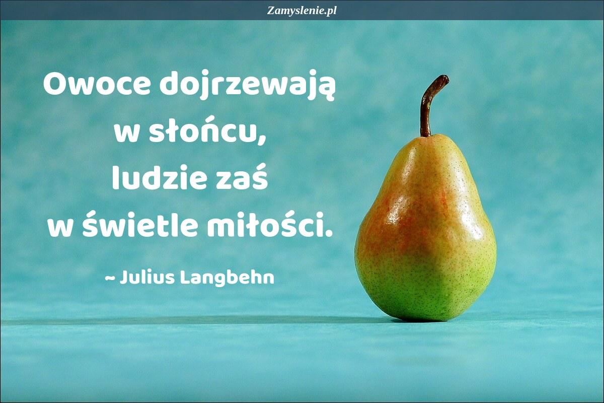 Obraz / mem do cytatu: Owoce dojrzewają w słońcu, ludzie zaś w świetle miłości.