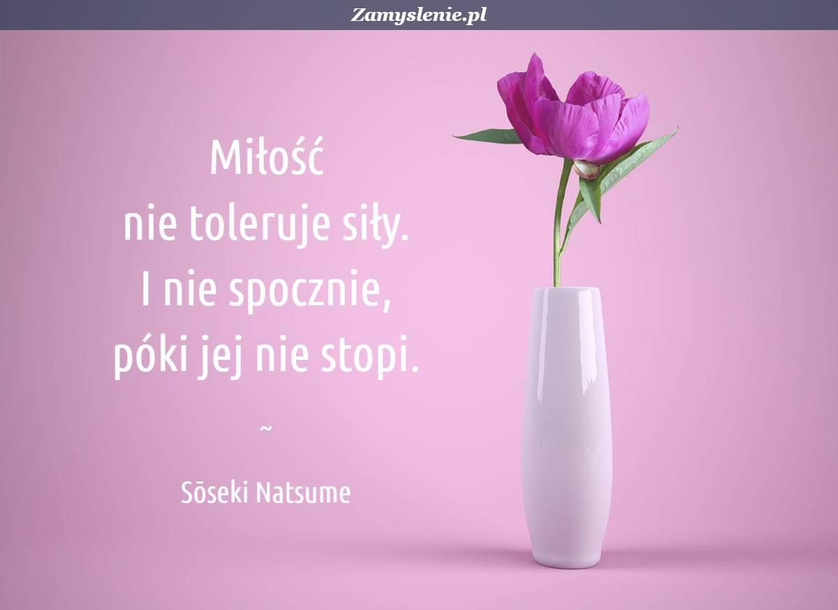 Obraz / mem do cytatu: Miłość nie toleruje siły. I nie spocznie, póki jej nie stopi.