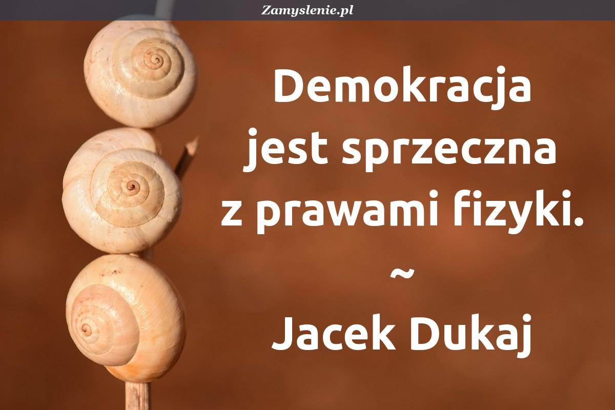 Obraz / mem do cytatu: Demokracja jest sprzeczna z prawami fizyki.