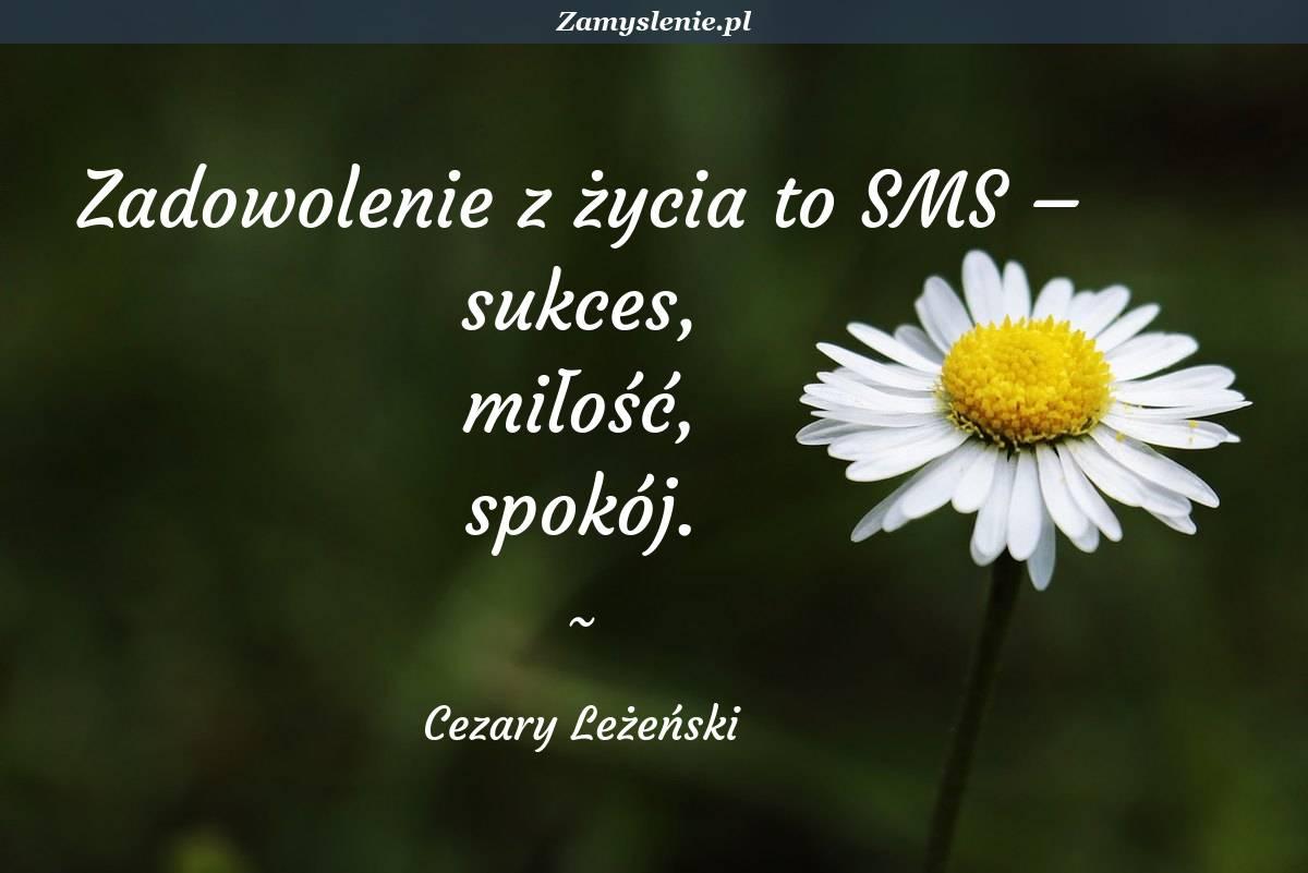 Obraz / mem do cytatu: Zadowolenie z życia to SMS – sukces, miłość, spokój.