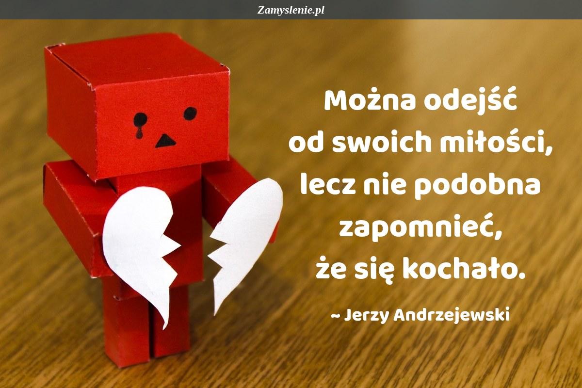 Obraz / mem do cytatu: Można odejść od swoich miłości, lecz nie podobna zapomnieć, że się kochało.