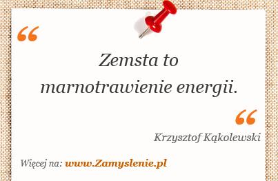 Obraz / mem do cytatu: Zemsta to marnotrawienie energii.