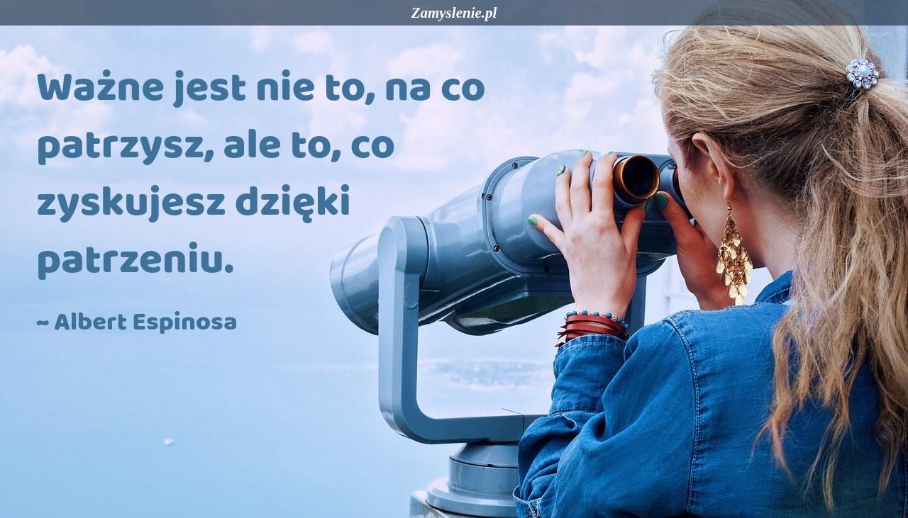 Obraz / mem do cytatu: Ważne jest nie to, na co patrzysz, ale to, co zyskujesz dzięki patrzeniu.