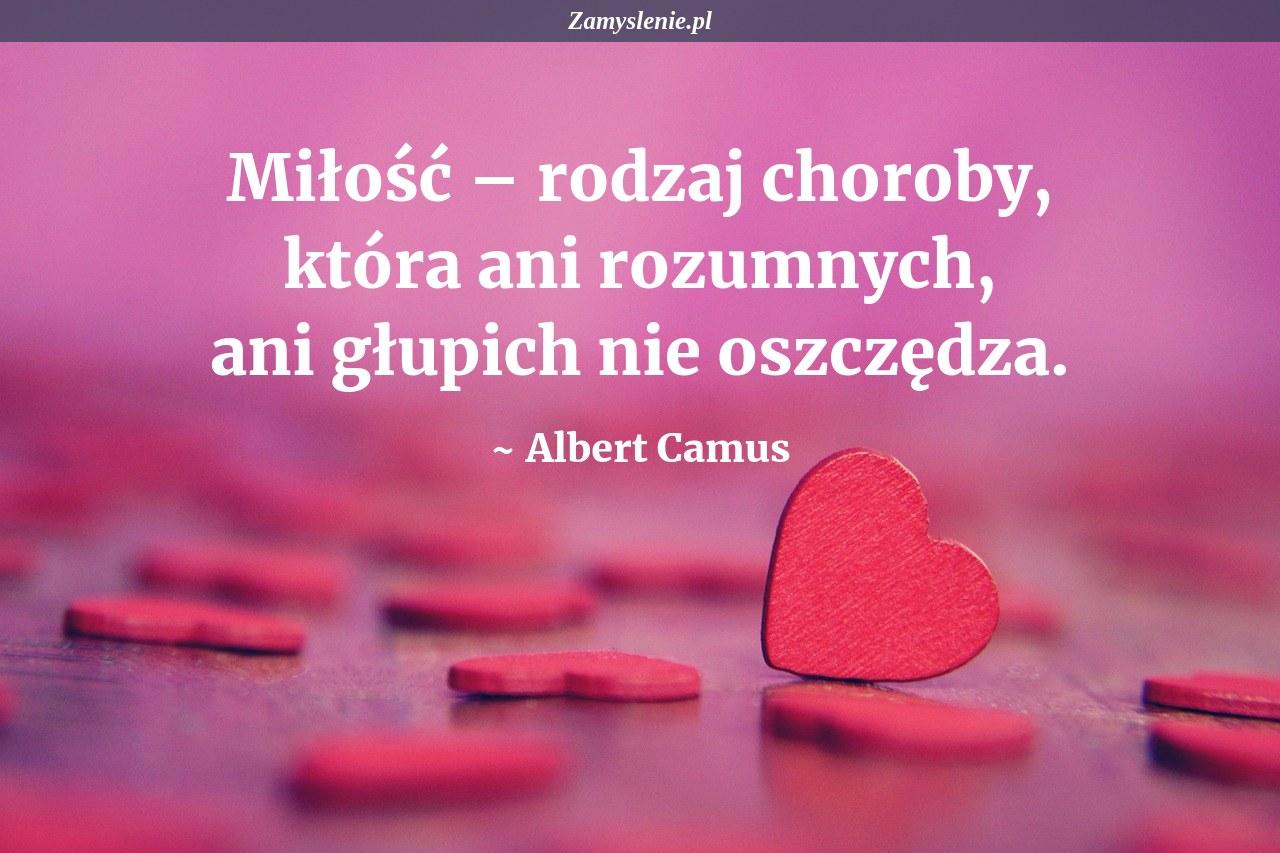 Obraz / mem do cytatu: Miłość – rodzaj choroby, która ani rozumnych, ani głupich nie oszczędza.
