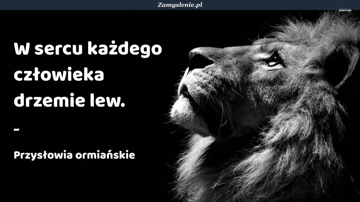 Obraz / mem do cytatu: W sercu każdego człowieka drzemie lew.