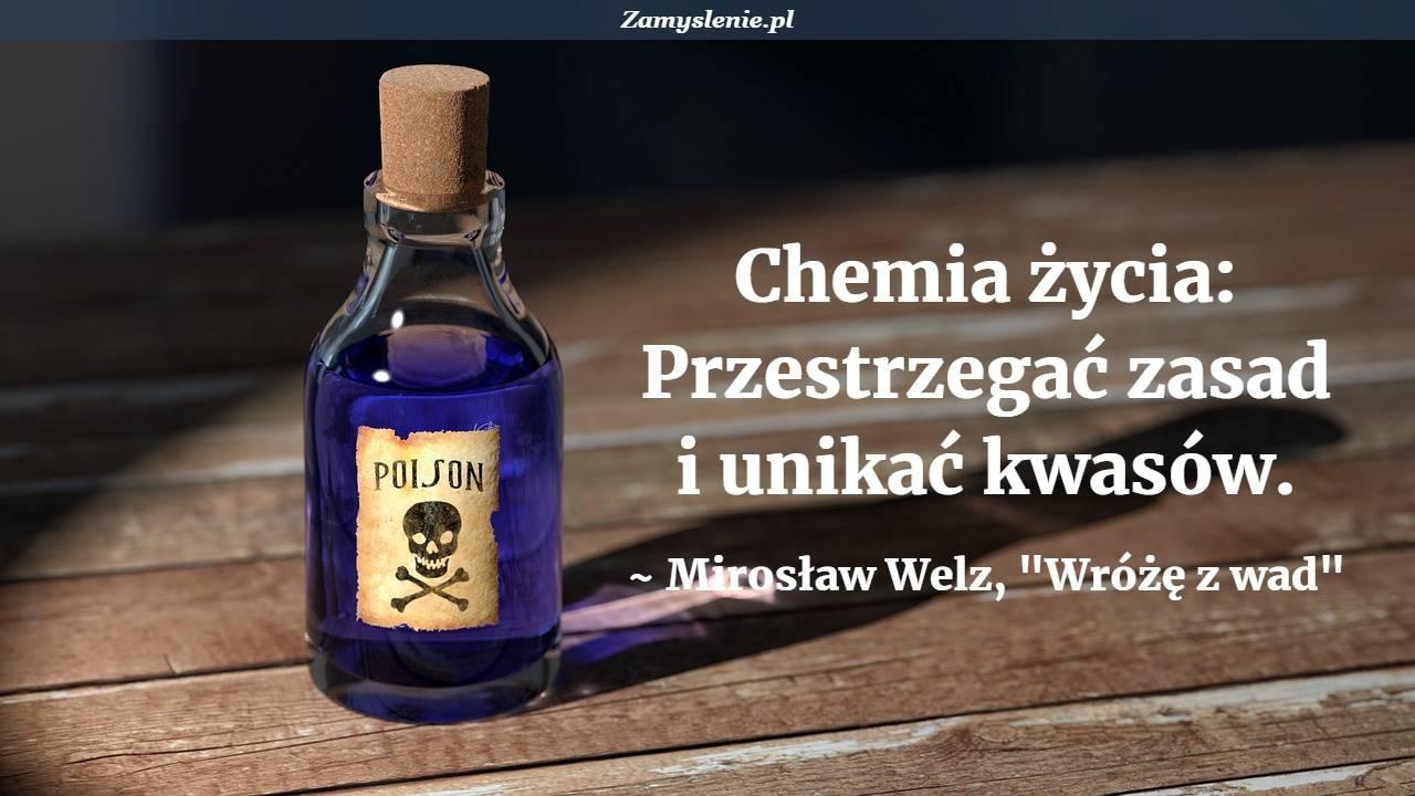 Obraz / mem do cytatu: Chemia życia: Przestrzegać zasad i unikać kwasów.