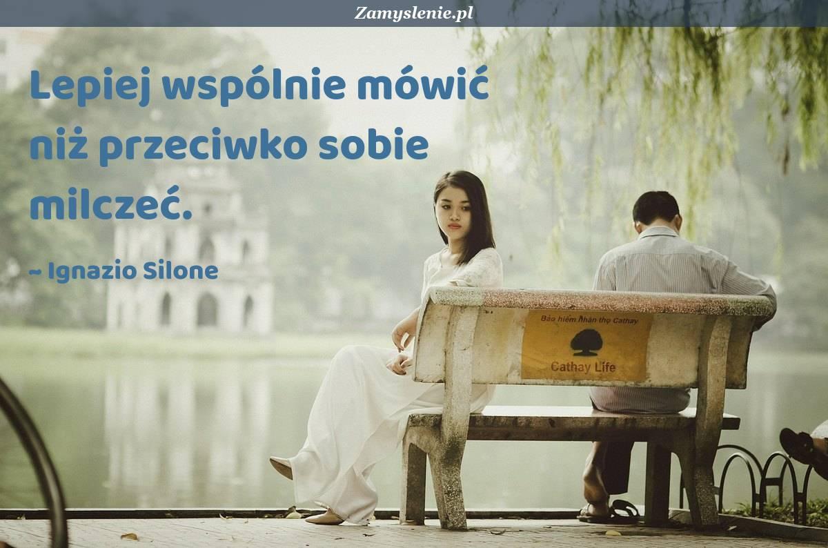 Obraz / mem do cytatu: Lepiej wspólnie mówić niż przeciwko sobie milczeć.