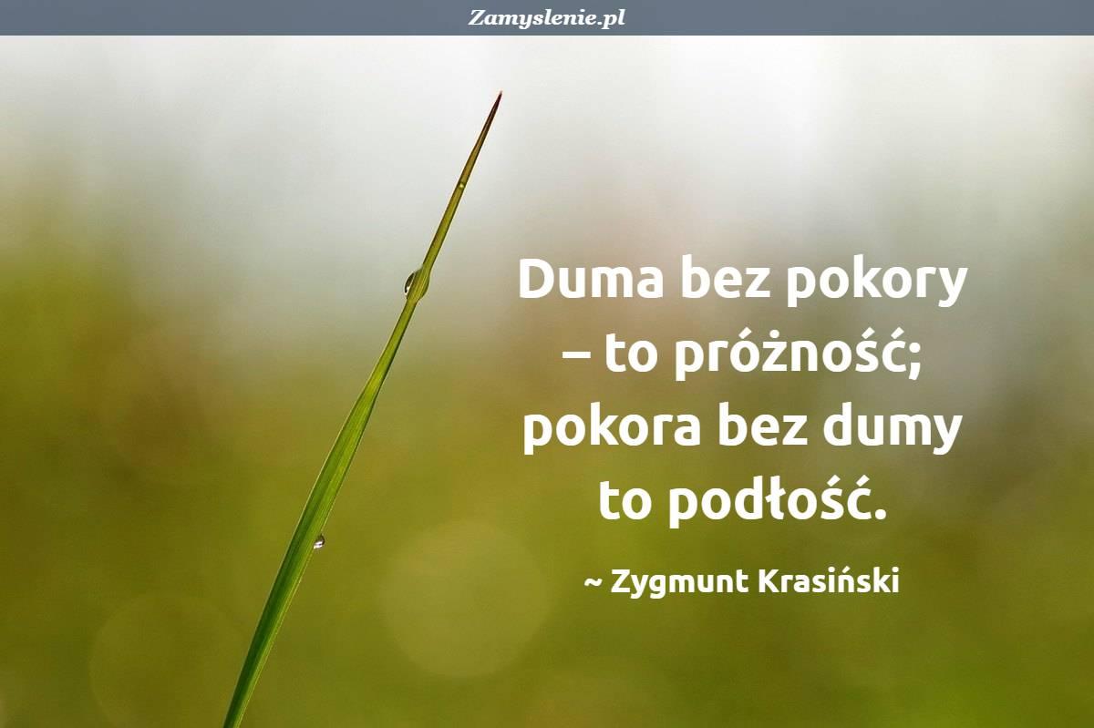 Obraz / mem do cytatu: Duma bez pokory – to próżność; pokora bez dumy to podłość.